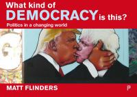 What kind of democracy is this? : politics in a changing world / Matt Flinders.